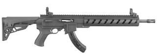 Ruger 10/22 ATI AR22